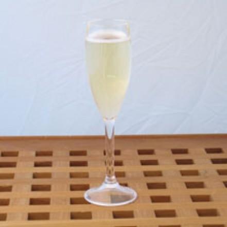 Meridian Zero Acrylic Champagne Glass