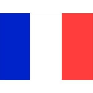 Flag Courtesy France 45 x 30cm