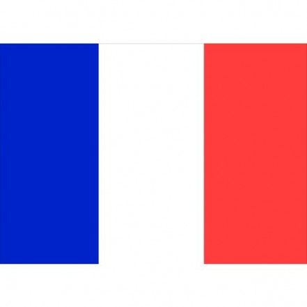 Flag Courtesy France 45 x 30cm