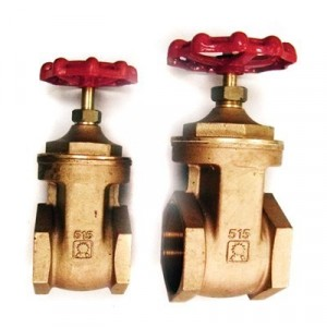 Aquafax Bronze Gate Valve